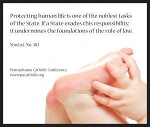 Youcat-pro-life-quoteWEBSITE