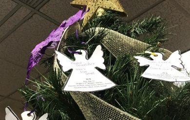 Christmas Tree In Harrisburg Pa